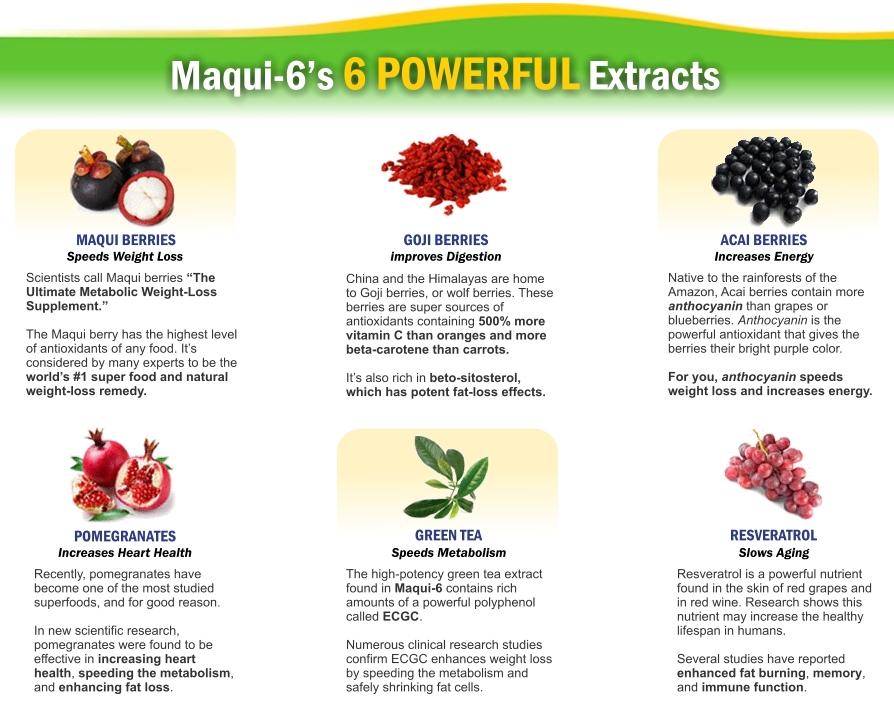 Maqui-6 Ingredients